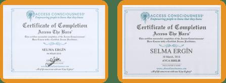 https://www.biradimat.com.tr/wp-content/uploads/2018/06/sertifika-8.png